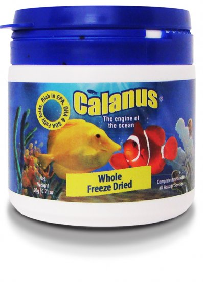 Calanus-Freeze-Dried.JPG