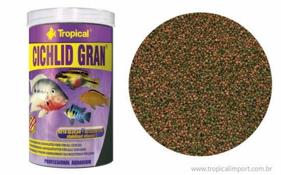 Cichlid-Gran-1024x636.jpg